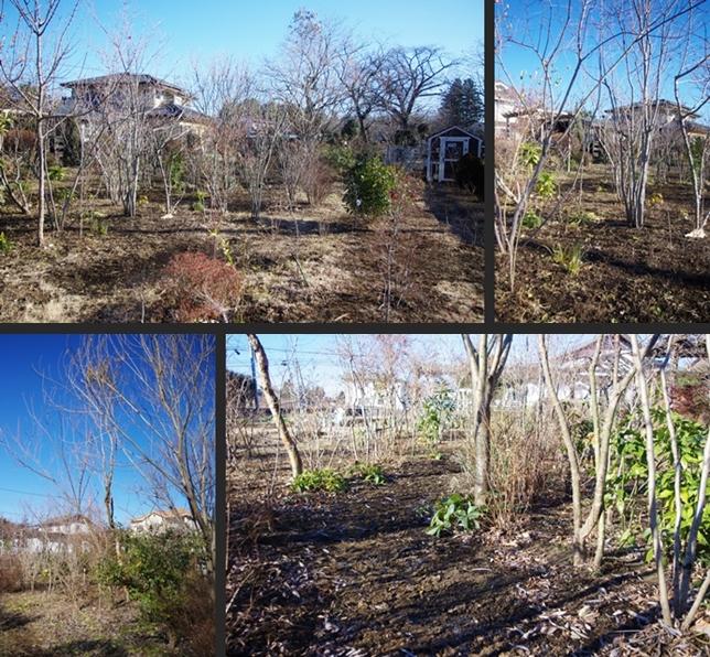 2013-12-29 2013-12-29 001 057-horz-vert