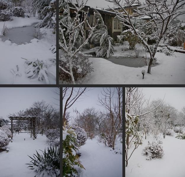 2013-01-14 2013-01-14 003 067-horz-vert-horz