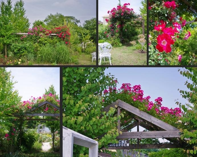 2013-05-27 2013-05-27 005 008-horz-vert