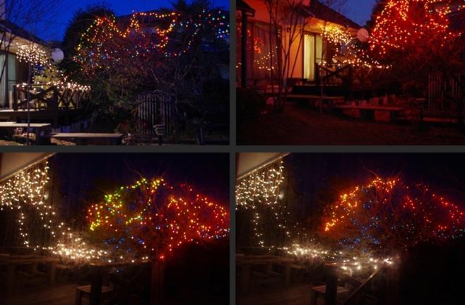 2013-12-12 2013-12-12 004 012-horz-vert