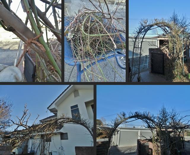 2014-01-14 2014-01-14 002 029-horz-vert