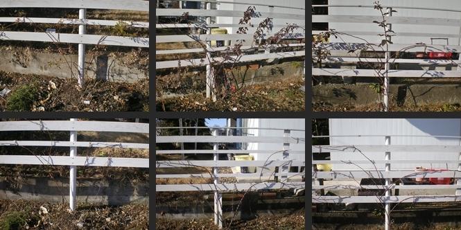 2007-01-06 2007-01-06 001 001-horz-vert