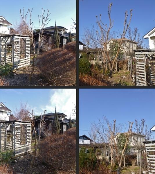 2014-01-18 2014-01-18 004 002-horz-vert