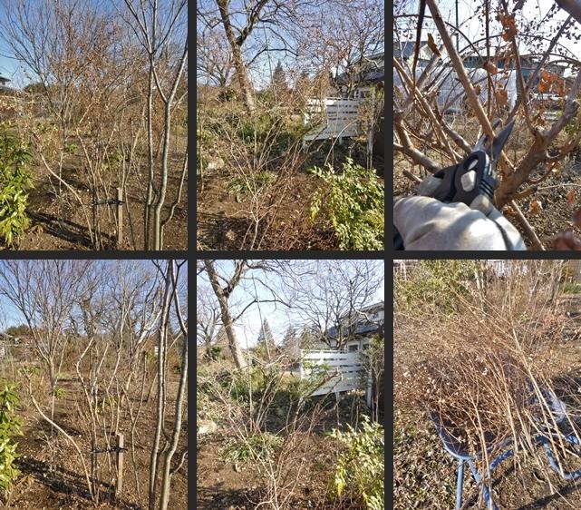 2014-01-18 2014-01-18 002 019-horz-vert