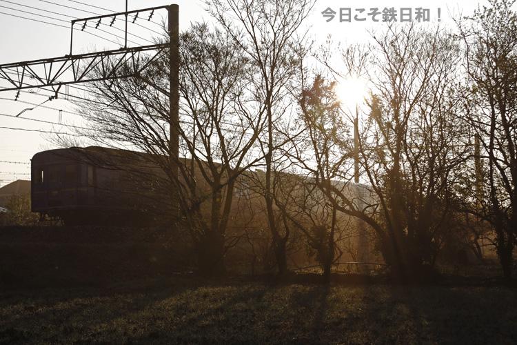 _MG_9537.jpg