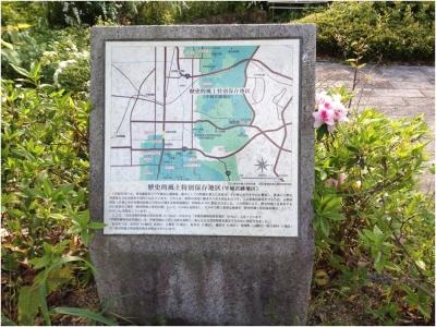 奈良木津川250503_51