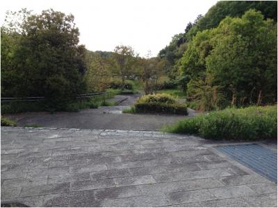 奈良木津川250503_52