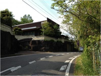 奈良木津川250503_33