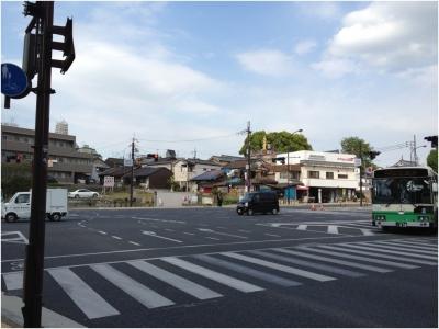 奈良木津川250503_07
