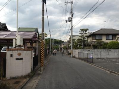 奈良木津川250503_24