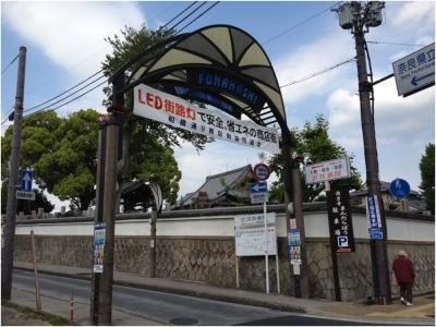 奈良木津川250503_09
