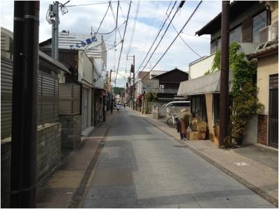 奈良木津川250503_10