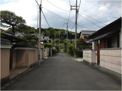奈良木津川250503_29