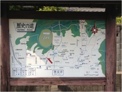 奈良木津川250503_31