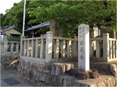 奈良木津川250503_69
