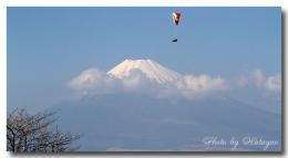 滝知山の富士5ab