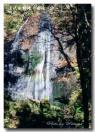 達沢不動滝女滝のコピー