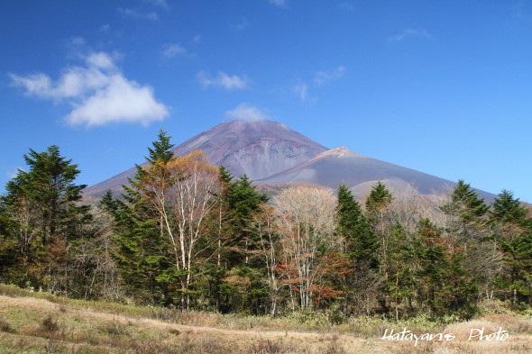 水ケ塚公園の富士山2_1