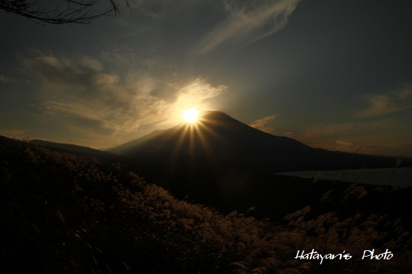 パノラマ台夕映えの富士c_1
