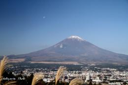 富士山111116b_1