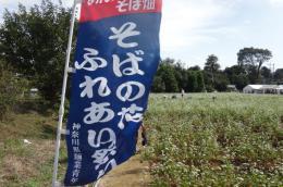 ソバの花ふれあい祭り1_1