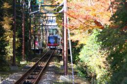 箱根美術館紅葉e_1