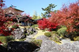 箱根美術館紅葉z_1