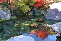 箱根美術館紅葉rr_1_1
