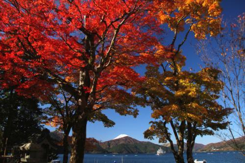 芦ノ湖遊覧y_1_1