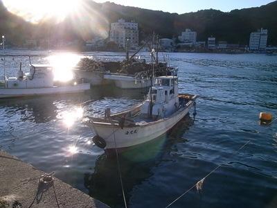 漁船はイカ釣り用でもあります