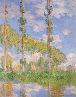 陽を浴びるポプラ並木