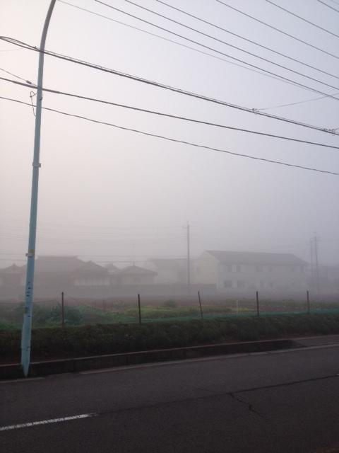 2014放射霧1