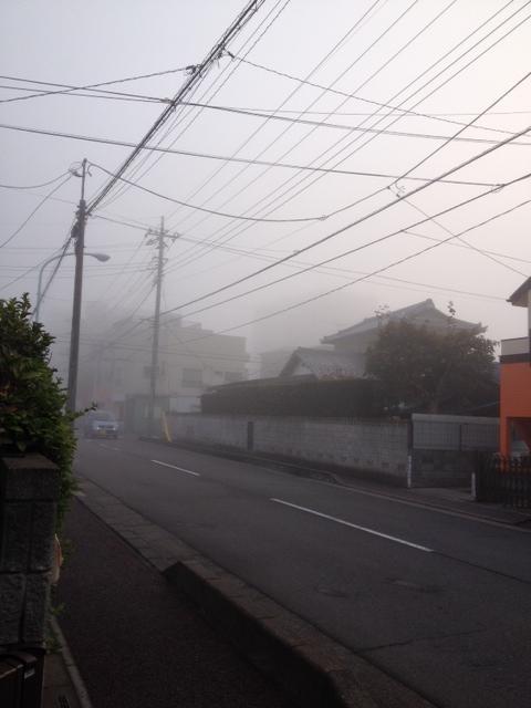 2014放射霧