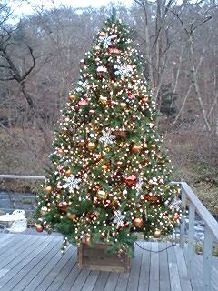 クリスマス・ツリー