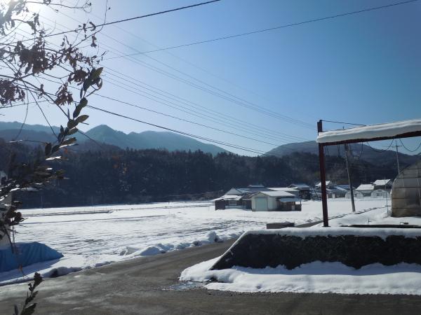 yuki20101.jpg