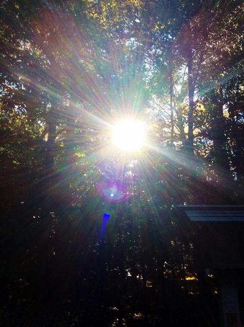 寒川の太陽