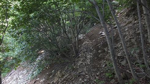 丸山噴泉 076 (15)ロープ