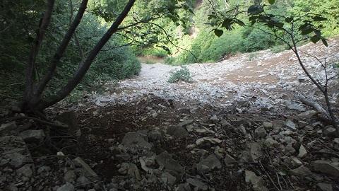 丸山噴泉 076 (16)崖