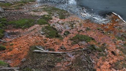 丸山噴泉 076 (41)