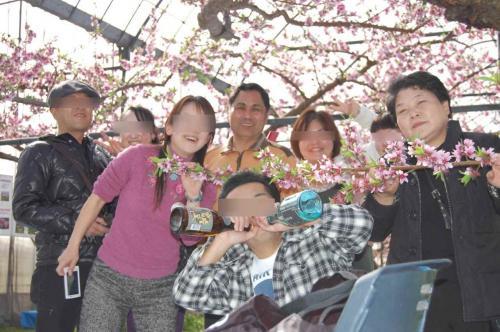 2011_03120074A_convert_20110314205357.jpg