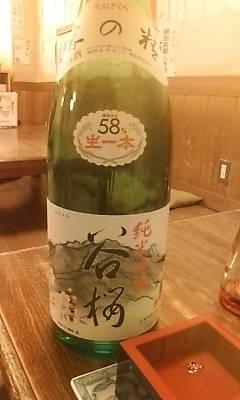 tanisakura101126.jpg
