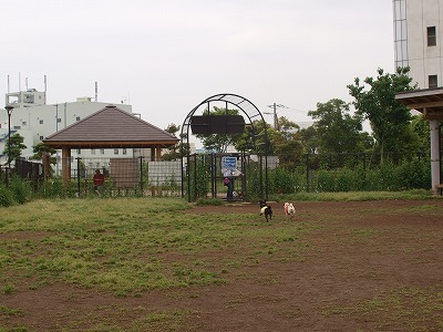 s-2011_06010028.jpg