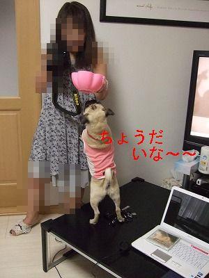 s-2011_07260070.jpg