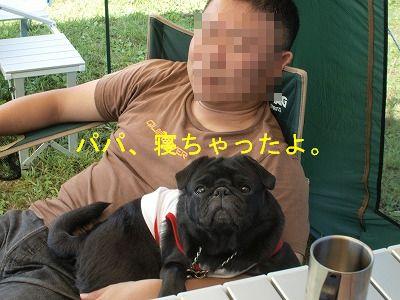s-2011_09120069.jpg