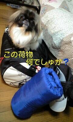 110524_1506~0002-0001
