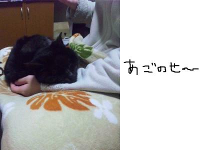 snap_himehitokoe_201236195641.jpg