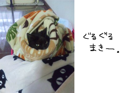 snap_himehitokoe_201236201550.jpg
