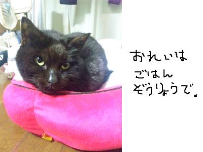 snap_himehitokoe_201236205818.jpg