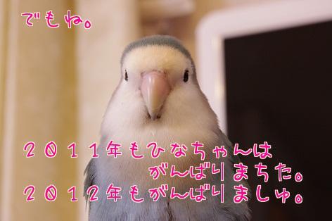 111231_3.jpg