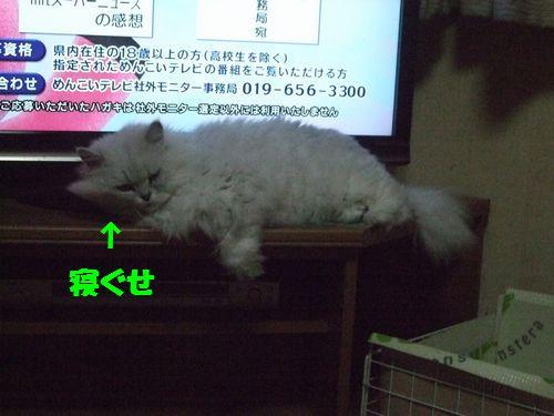 6_20110527213112.jpg
